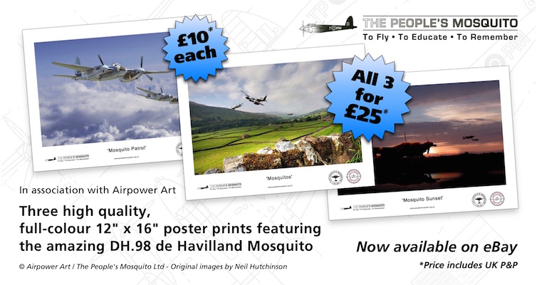 The People's Mosquito prints now available on eBay